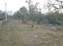 زمین بافت.سنددار.ویوی عالی در شیپور-عکس کوچک