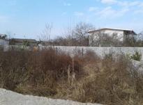 منطقه امیرآباد زمین مسکونی 200 متر در ایزدشهر در شیپور-عکس کوچک