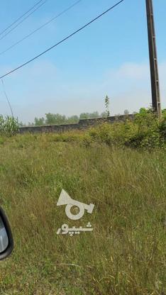 فروش زمین تفکیکی سنددار مسکونی۵۵۰۰ متر  در گروه خرید و فروش املاک در گیلان در شیپور-عکس1