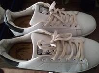کفش استوک آدیداس سایز43  در شیپور-عکس کوچک