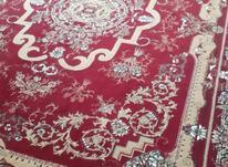 فرش کاشان 12 متری در شیپور-عکس کوچک