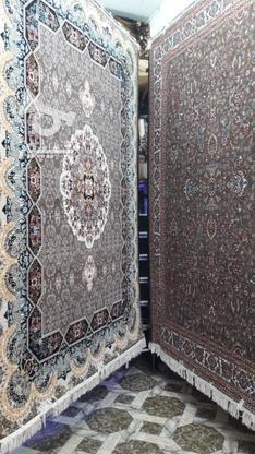 هرتخته700شانه تراکم2550 در گروه خرید و فروش لوازم خانگی در کردستان در شیپور-عکس1