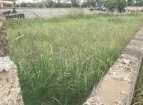 زمین مسکونی 200 متر در بابلسر در شیپور-عکس کوچک