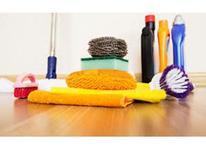نظافتچی خانم با حقوق عالی در شیپور-عکس کوچک