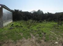 فروش زمین مسکونی 2000 متر در بندرانزلی(غازیان) در شیپور-عکس کوچک