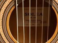 گیتار اسپانیشSolea در شیپور-عکس کوچک