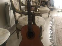 گیتار یا ما ها در شیپور-عکس کوچک