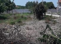 فروش زمین مسکونی 280 متر آبمال در شیپور-عکس کوچک