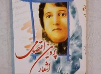 کتاب پروین اعتصامی  آکبند در شیپور-عکس کوچک