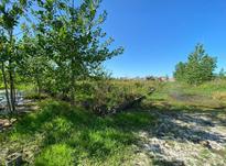 زمین مسکونی در منطقه آزاد 400 متر در زیباکنار در شیپور-عکس کوچک