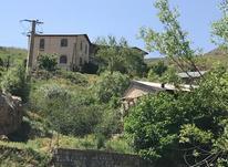 فروش زمین مسکونی 170 متر در طالقان در شیپور-عکس کوچک