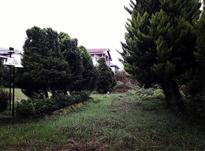 فروش زمین  سنددار/ دور محصور شده در شیپور-عکس کوچک