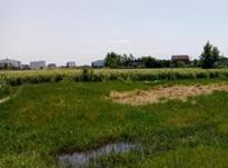 قطعه زمین شهرکی زمین 302 متر جهت ساخت وساز بیواسطه در شیپور-عکس کوچک