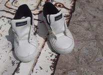 کفش اروجینال 40سفیدطلایی و مشکی سبز  در شیپور-عکس کوچک