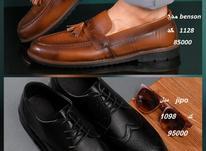 کفش کالج مردانه در 2 مدل کلاسیک / پرداخت درب منزل در شیپور-عکس کوچک