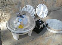 دستگاه جوجه کشی مینی ماکس در شیپور-عکس کوچک
