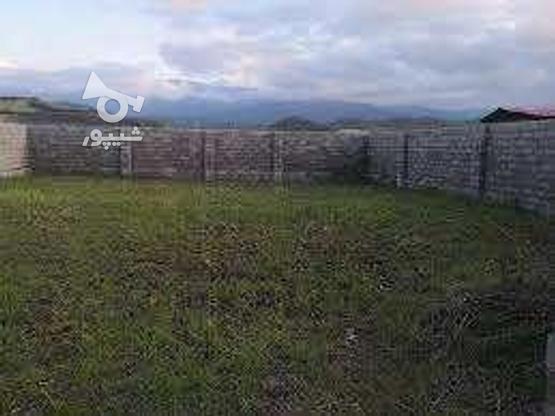 فروش زمین مسکونی 320 متر  داخل بافت در عباس آباد در گروه خرید و فروش املاک در مازندران در شیپور-عکس1