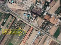 217 مترزمین سند تک برگ  در هشتگرد قدیم در شیپور-عکس کوچک