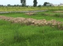 200 متر زمین شهرکی در فازهای مختلف در شیپور-عکس کوچک