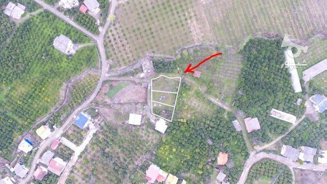 دو قطعه زمین 400و515 متری سنددار داخل بافت در کریمآبادچالوس در گروه خرید و فروش املاک در مازندران در شیپور-عکس4