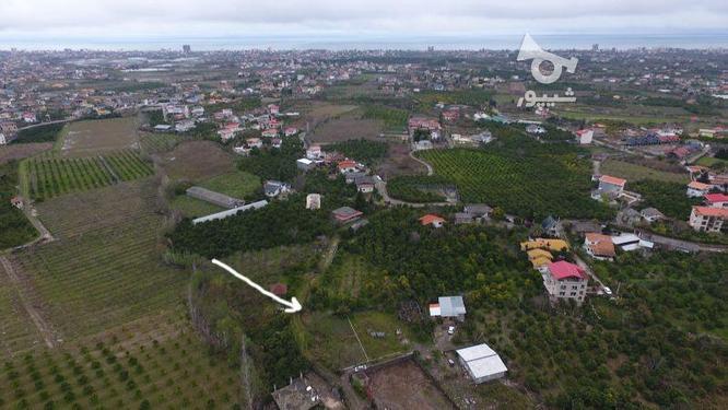 دو قطعه زمین 400و515 متری سنددار داخل بافت در کریمآبادچالوس در گروه خرید و فروش املاک در مازندران در شیپور-عکس3