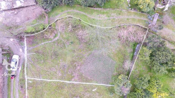 دو قطعه زمین 400و515 متری سنددار داخل بافت در کریمآبادچالوس در گروه خرید و فروش املاک در مازندران در شیپور-عکس1
