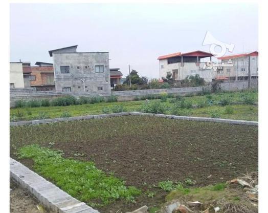 226مترزمین خوش قواره(بدون پرتی)سندتک برگ/خانه دریا در گروه خرید و فروش املاک در مازندران در شیپور-عکس1
