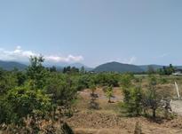 420 متر زمین کوهپایه ای در شیپور-عکس کوچک