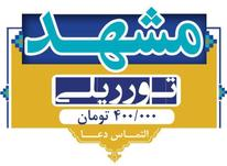 تور ریلی  مشهد الرضا در شیپور-عکس کوچک