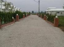زمین مسکونی 386 متر در سرخرود در شیپور-عکس کوچک