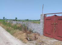 2000متر باغ محصور نزدیک انشعابات در شیپور-عکس کوچک
