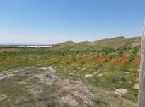 2 هکتار زمین در آتانک در شیپور-عکس کوچک