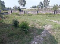 فروش فوری زمین سند دار در چالوس در شیپور-عکس کوچک
