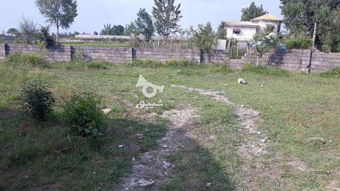 زمین سند دار در چالوس402 متر در گروه خرید و فروش املاک در مازندران در شیپور-عکس2