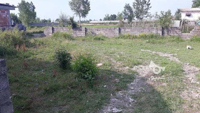زمین سند دار در چالوس402 متر در گروه خرید و فروش املاک در مازندران در شیپور-عکس1