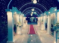 جشن عروسی (تشریفات شاهزاده) در شیپور-عکس کوچک