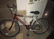 دوچرخه جیتان 10 در شیپور-عکس کوچک