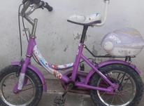دوچرخهدخترانه در شیپور-عکس کوچک