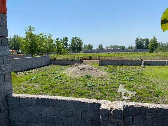 زمین 320 متر داخل بافت مسکونی در گروه خرید و فروش املاک در گیلان در شیپور-عکس1