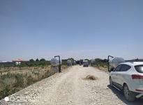 فروش زمین کشاورزی 800 متر در ملارد در شیپور-عکس کوچک