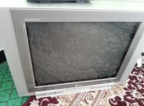 تلویزیون ال جی 24 در شیپور-عکس کوچک