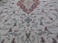 فروش   فرش در شیپور-عکس کوچک