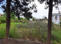 زمین سنددار بافت مسکونی 205 م نوشهر در شیپور-عکس کوچک