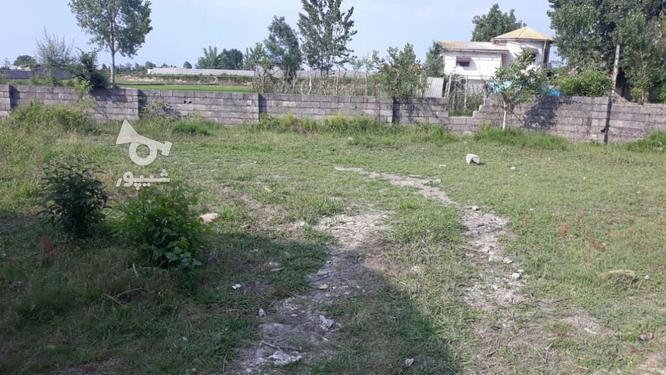 فروش یک قطعه زمین سند دار چالوس.منطقه آبرنگ،داخل بافت. در گروه خرید و فروش املاک در مازندران در شیپور-عکس1