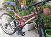 دوچرخه سایز 24در حد المپیا در شیپور-عکس کوچک