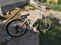دوچرخه حرفه ای تمیز  در شیپور-عکس کوچک