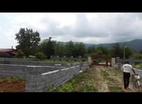 فروش زمین مسکونی 250 متر در محمودآباد در شیپور-عکس کوچک
