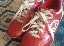 کفش استوک دار نو نو در شیپور-عکس کوچک