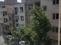 رهن آپارتمان 49 متر در بریانک نیک فر در شیپور-عکس کوچک