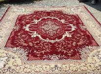 فرش سالم 12 متری در شیپور-عکس کوچک